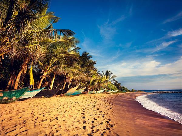 Family holiday in Sri Lanka