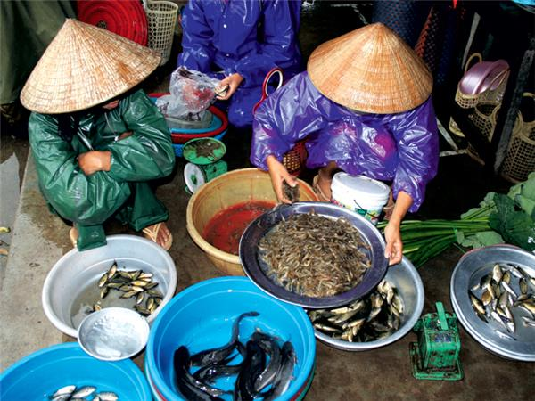 East Vietnam budget holiday