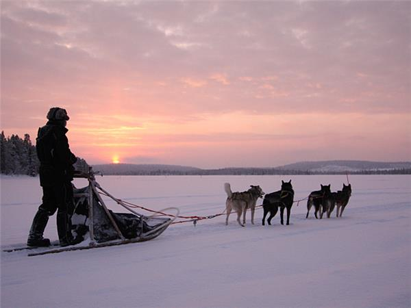 Finland huski safari & Northern Lights holiday