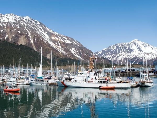 Alaska Wilderness and wildlife tour