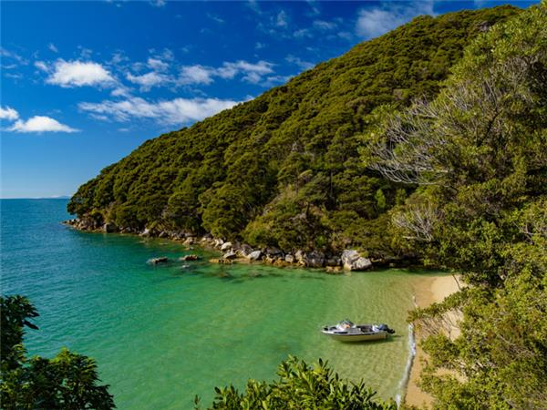 New Zealand holiday, small group