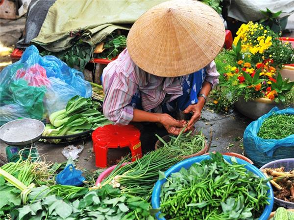 Vietnam small group holiday
