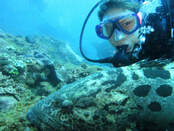 South Africa marine conservation diving holiday