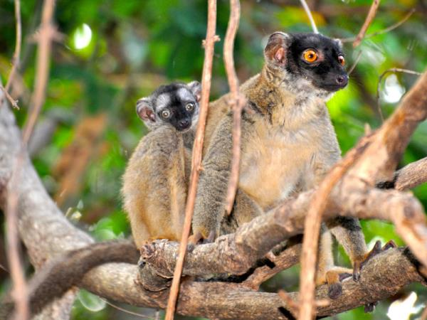 Madagascar North Coast adventure holiday