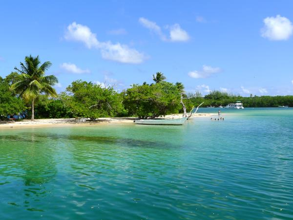 Tobago tailor made holiday, culture, nature & birds
