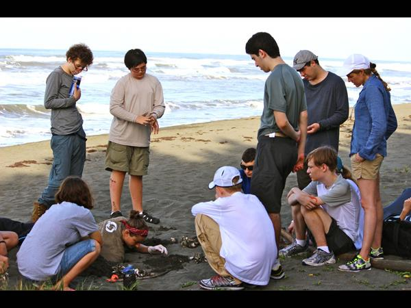 School expedition volunteering with turtles in Costa Rica