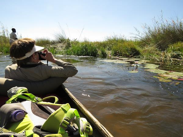 796162a56817 Botswana camping safaris. Helping Dreamers Do