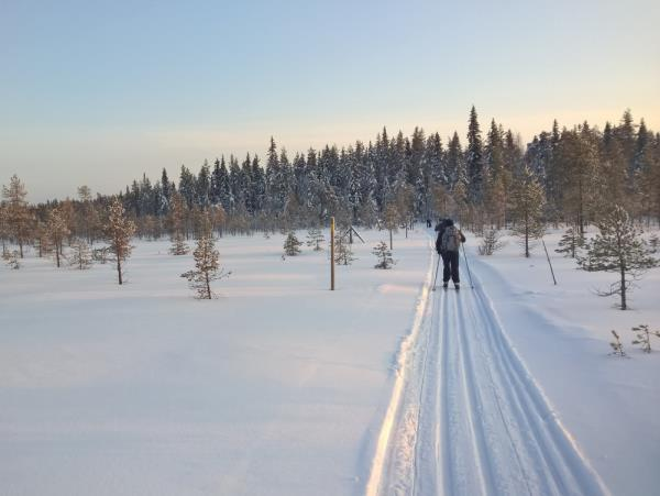 Cross-country skiing holiday in Finland, Russian border