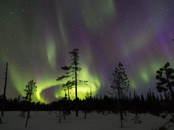 Finland activity holiday and Northern Lights