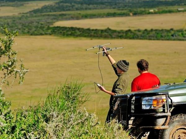 Volunteer at The Shamwari Wildlife Reserve, South Africa