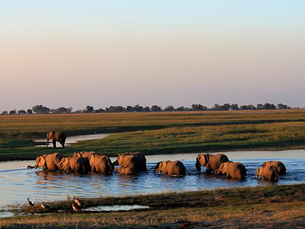 Namibia and Botswana camping safari