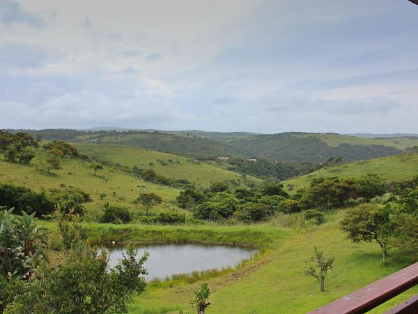 South Africa and Swaziland safari