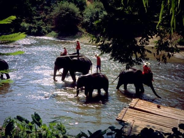 Family adventure holiday in Thailand