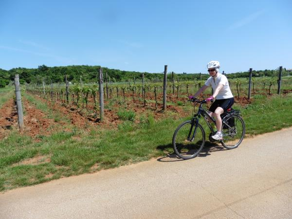 Croatia wine tour by bike