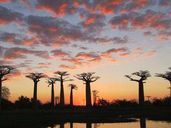 Small group holidays to Madagascar