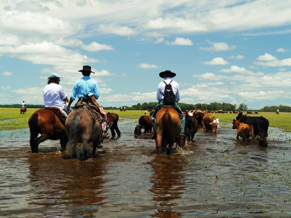 Horse riding holiday in Argentina