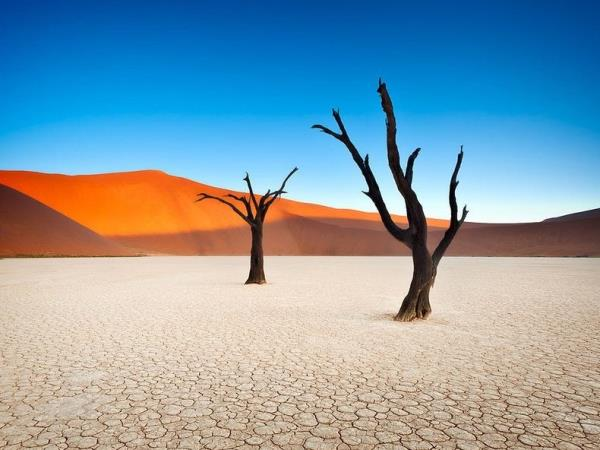 Namibia small group guided holiday and safari