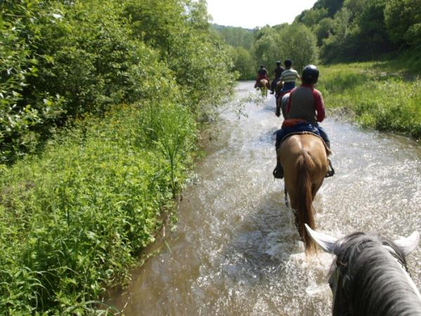 Bulgaria horse riding holiday