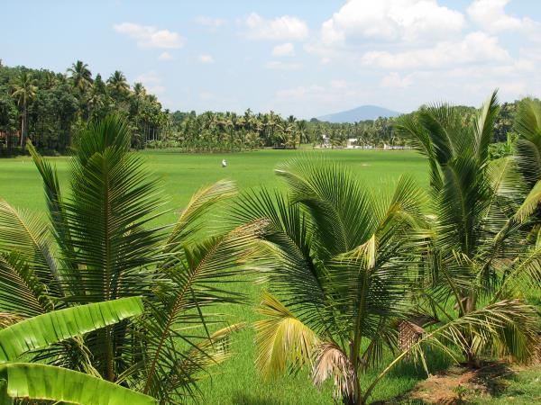 Rural cycling tours in South India