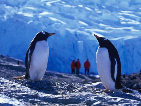 Antarctic cruise and hiking in Chile