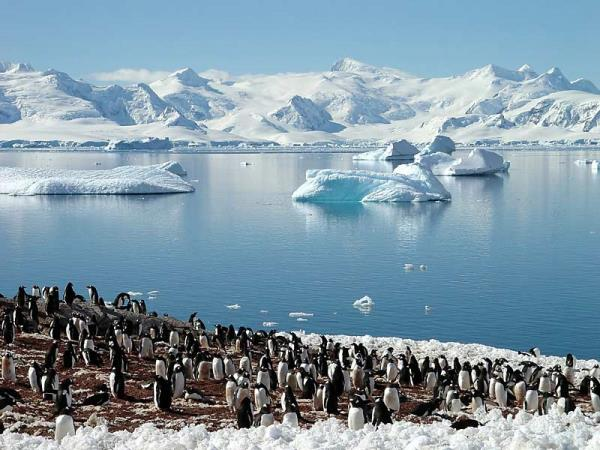 Falklands, South Georgia and Antarctic Circle crossing
