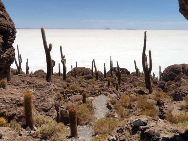 Bolivia tour, tour the highlights of Bolivia
