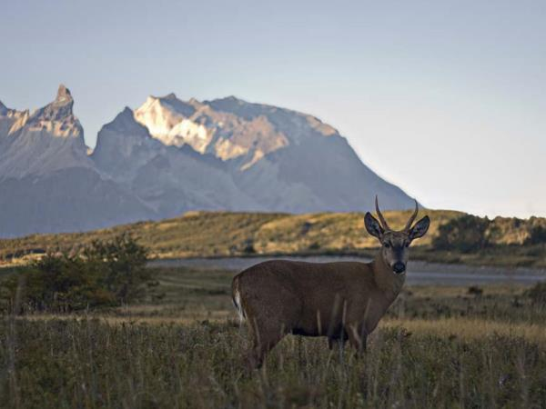 Patagonia luxury adventure holiday
