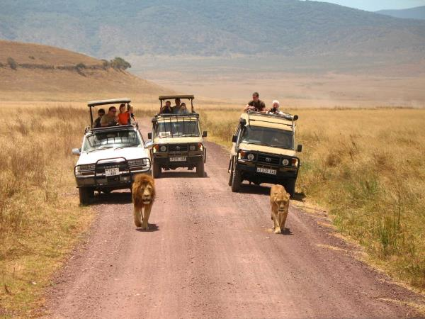 Tanzania national parks safari holiday