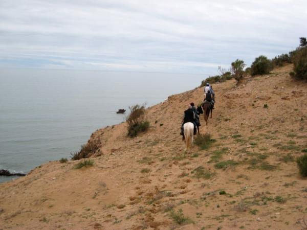 Morocco horse riding holiday, beach ride