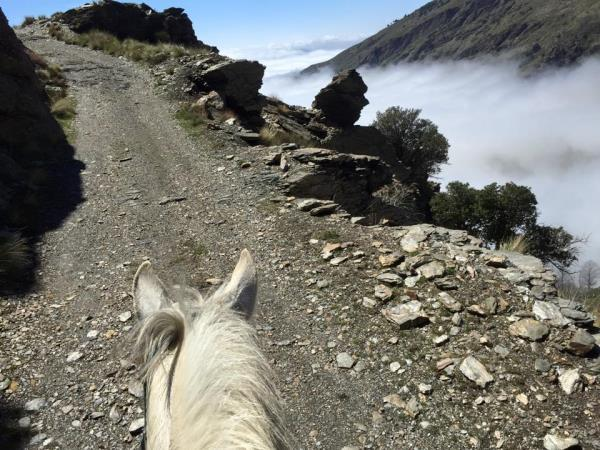 Horse riding holiday in Sierra Nevada Mountains, Spain