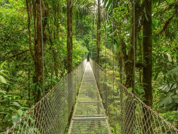 Costa Rica tailor made holiday, vistas and volcanoes