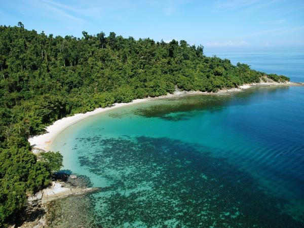 Luxury beach holiday in Borneo & Orangutans