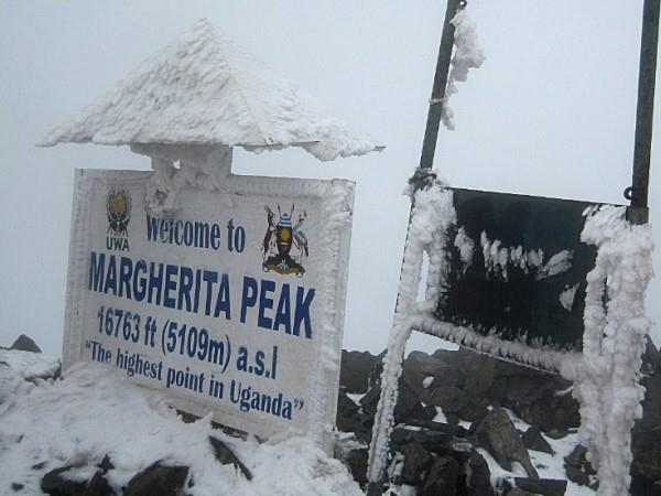 Gorilla and Rwenzori expedition in Uganda