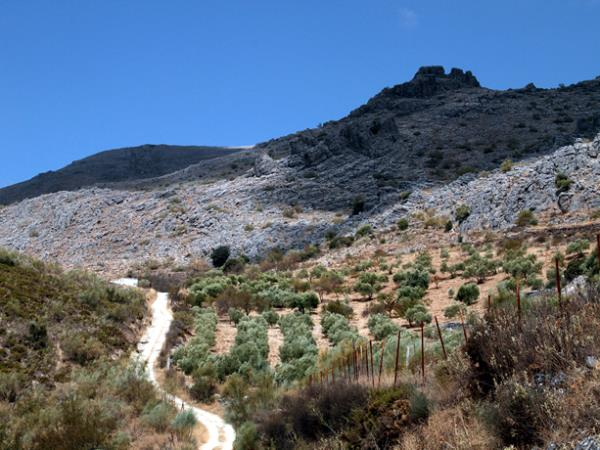 Walking holiday in Andalucia, trails Serrania de Ronda
