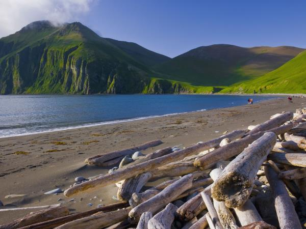 Kamchatka & the Commander Islands wildlife cruise