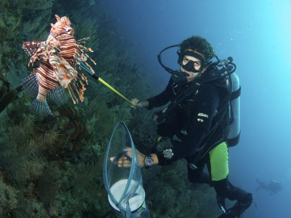 Lionfish spearing marine conservation in Belize