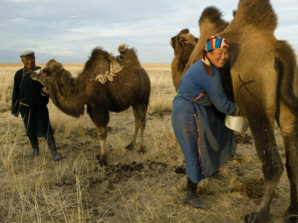 Adventure holidays in Mongolia