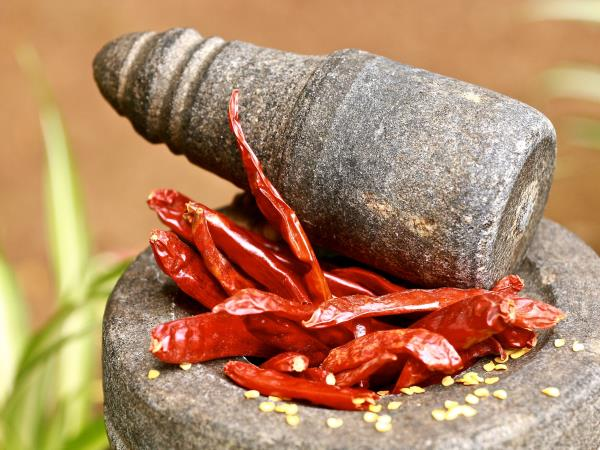 Ayurvedic cooking holiday in Southern India