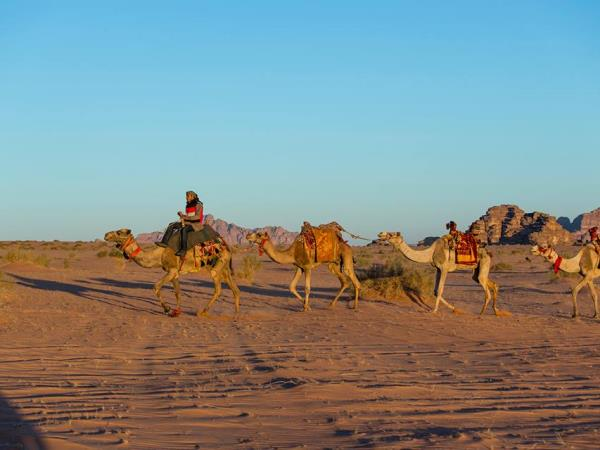 Jordan highlights & camel safari, small group