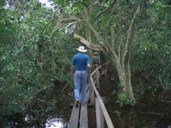 The Pantanal and Amazon tour in Brazil