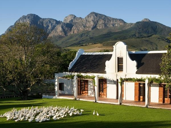 South Africa gourmet tour