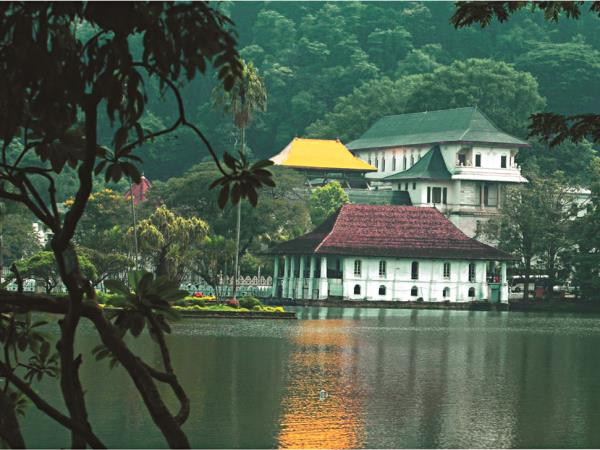 Honeymoon in Sri Lanka