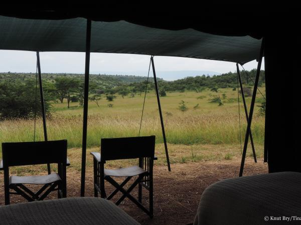 Kenya big five safari, tailor made