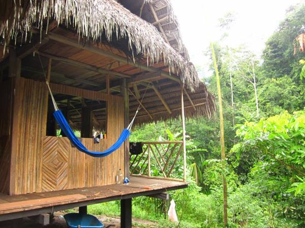 Amazon eco lodge budget tour, Peru