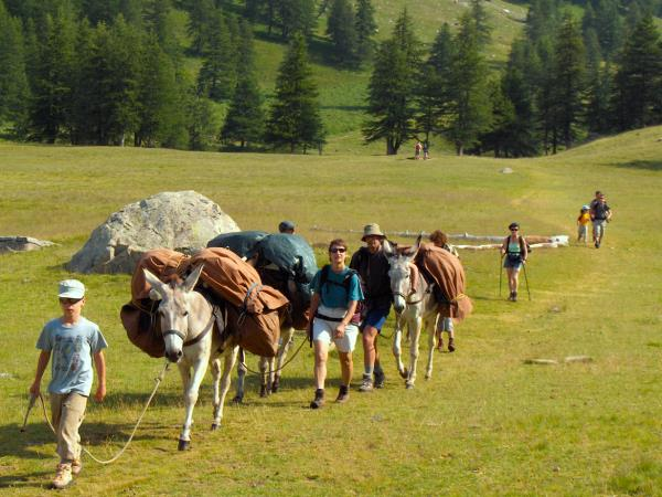 Mercantour family walking holiday, France