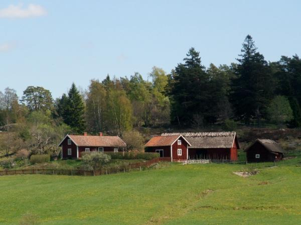 Sweden activity holiday, Stockholm countryside