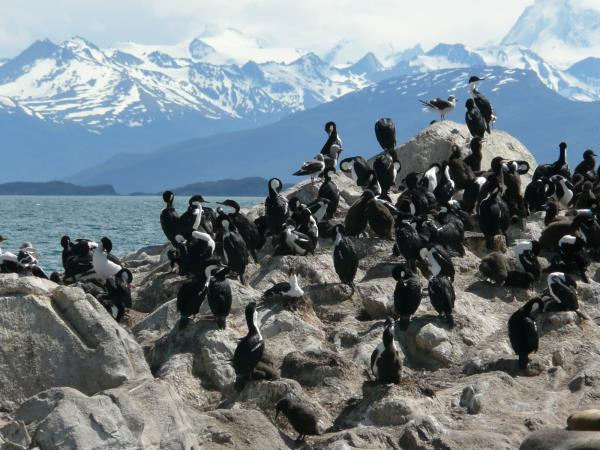 Patagonia wilderness holiday, journey to Ushuaia