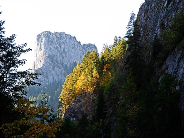 Romania's natural wonders holiday, small group