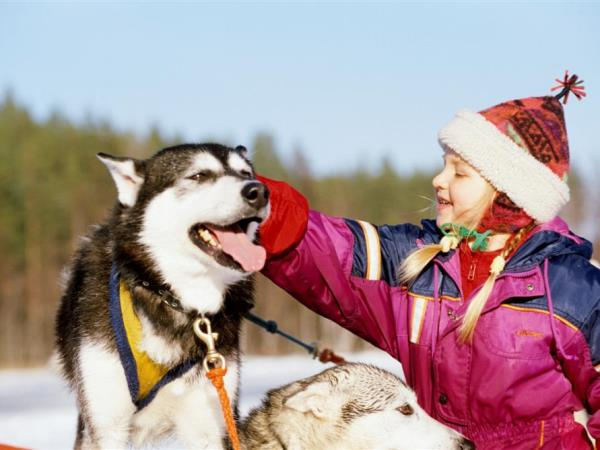 Family holiday to Finnish Lapland, the best of Kuusamo