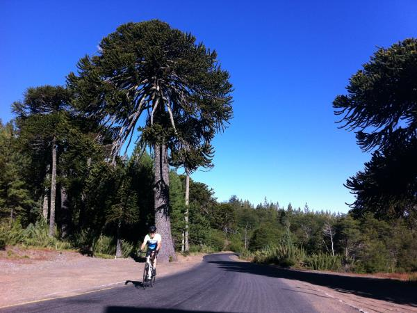 Chile cycling holiday